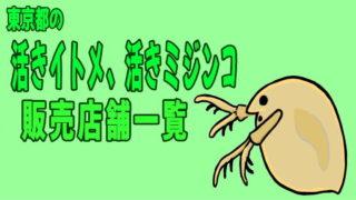 東京都の活きイトメ、活きミジンコ・ゾウリムシ販売店舗一覧