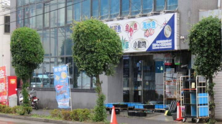 東京ペット貿易