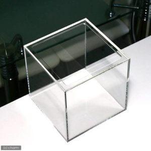20cmアクリルキューブ水槽