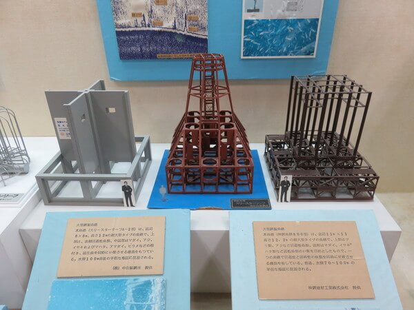 観音崎自然博物館