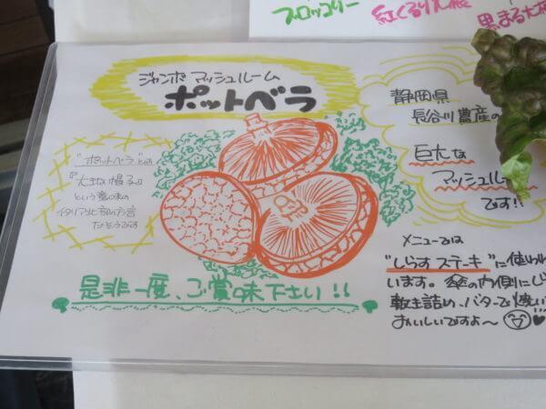 観音崎自然博物館レストラン マテリア