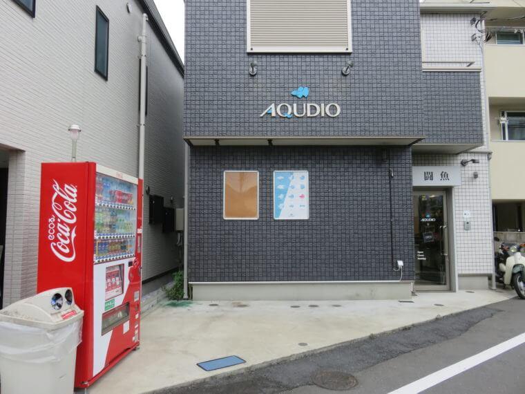 闘魚専門店AQUDIO(アクディオ)
