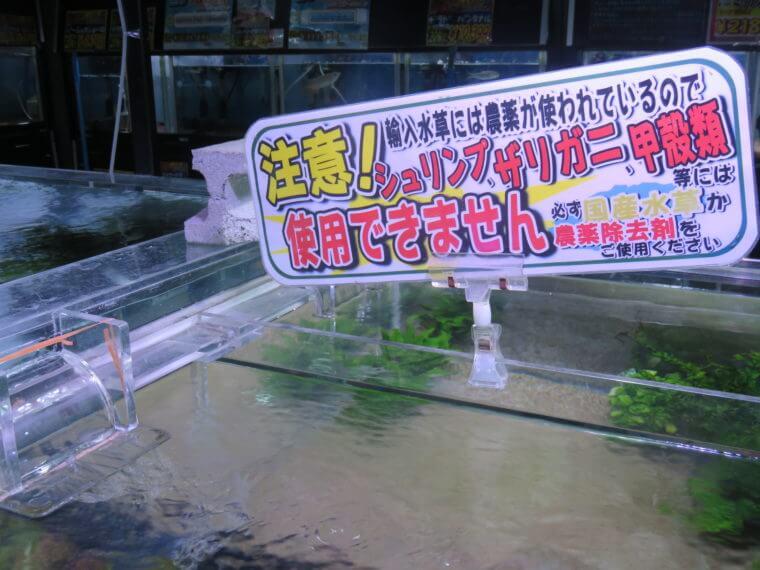 ひごペットフレンドリー京都店