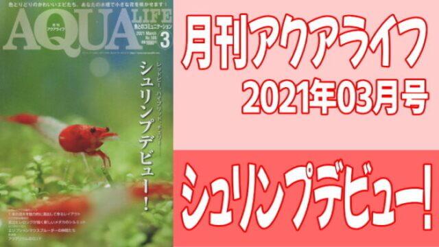 月刊アクアライフ2021年02月号「シュリンプデビュー!」