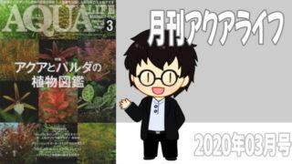 月刊アクアライフ2020年03月号「アクアとパルダの植物図鑑」