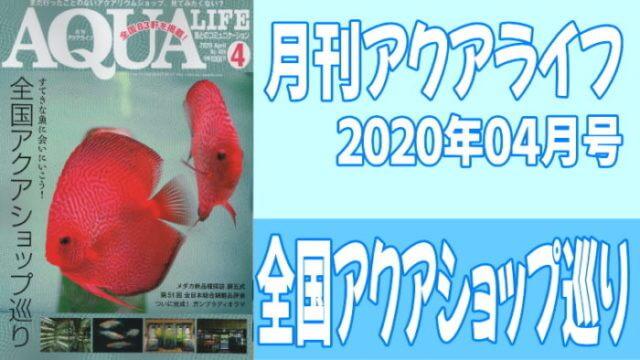 月刊アクアライフ2020年04月号「全国アクアショップ巡り〜すてきな魚に会いにいこう!〜」