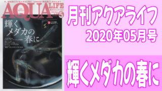 月刊アクアライフ2020年05月号「輝くメダカの春に」