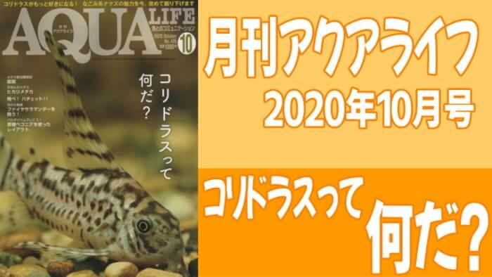 月刊アクアライフ2020年10月号「コリドラスって何だ?」