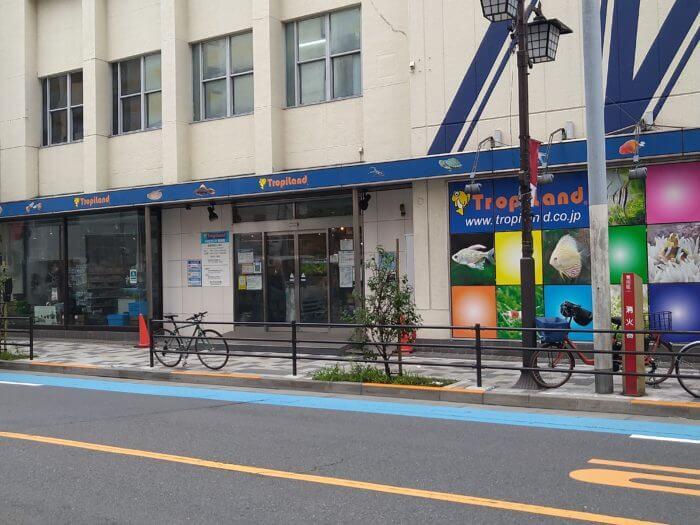 ropiLand(トロピランド) 荒川店