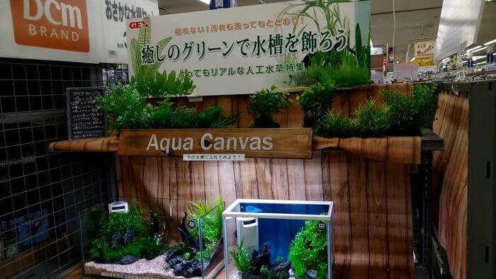 よこはま金魚久里浜店