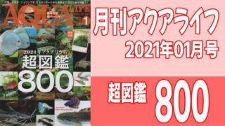 月刊アクアライフ2021年01月号「超図鑑800」