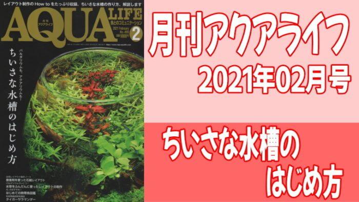 月刊アクアライフ2021年02月号「ちいさな水槽のはじめ方」