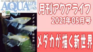 月刊アクアライフ2021年05月号 『メダカが描く新世界』