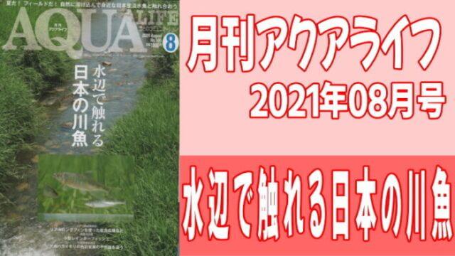 月刊アクアライフ2021年08月号 『水辺で触れる日本の川魚』