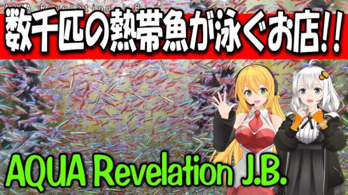 AQUA Revelation J.B. Youtube