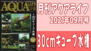 月刊アクアライフ2021年09月号 『30cmキューブ水槽』