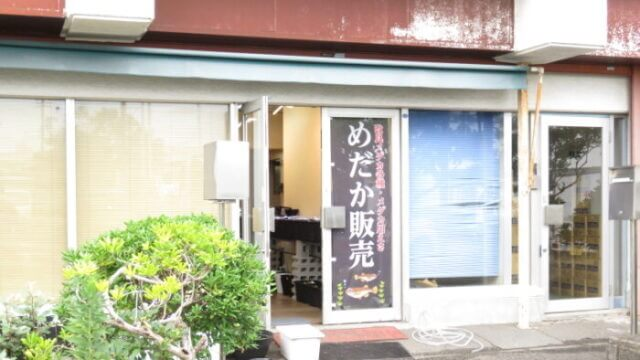 サバンナ横浜店