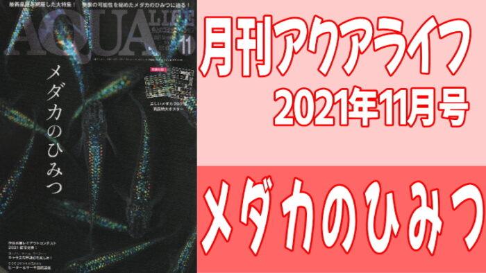 月刊アクアライフ 2021年11月号『メダカのひみつ』